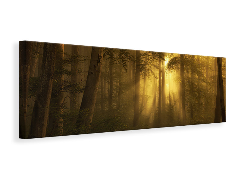 Panoramic Canvas Print Yellow - The Bigger Picture
