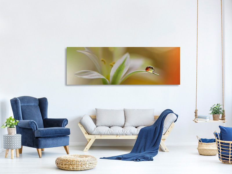 Panoramic Canvas Print Sound Of Colors