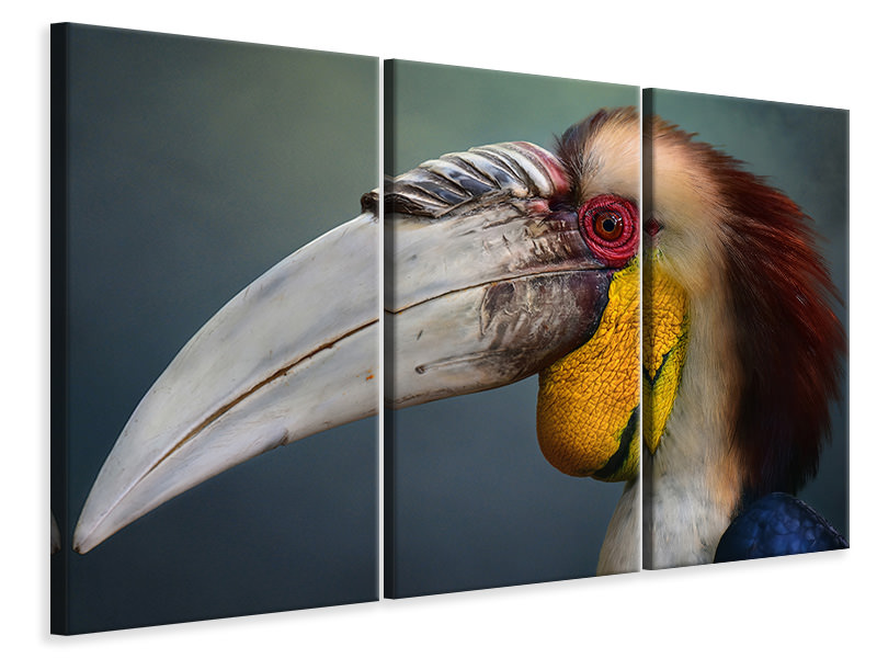 3 Piece Canvas Print Jabrix