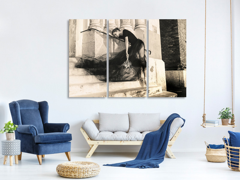 3 Piece Canvas Print Bride Fears