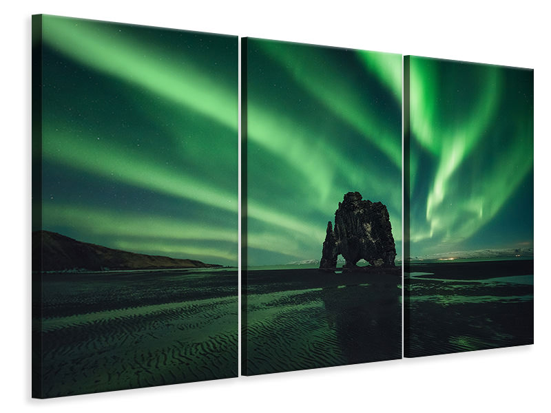 3 Piece Canvas Print Rhino II