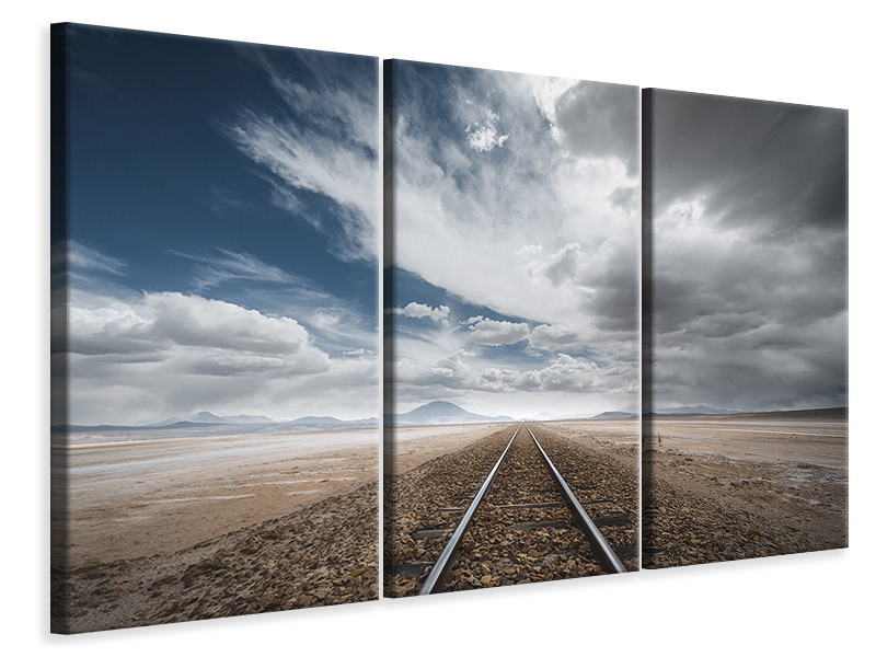 Tableau sur Toile en 3 parties The Long Road