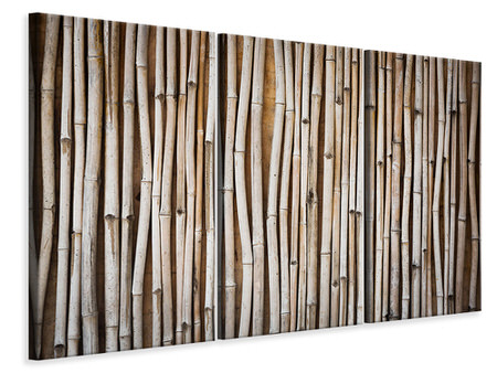 3 Piece Canvas Print Dried Bamboos