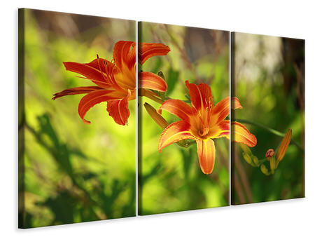 3 Piece Canvas Print Lilies In Nature