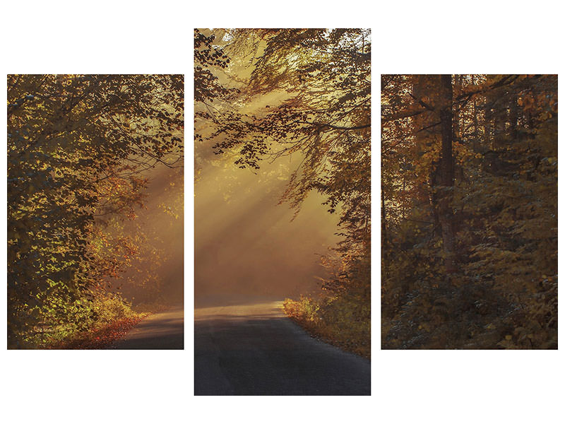 Modern 3 Piece Canvas Print Sunbeams in the forest