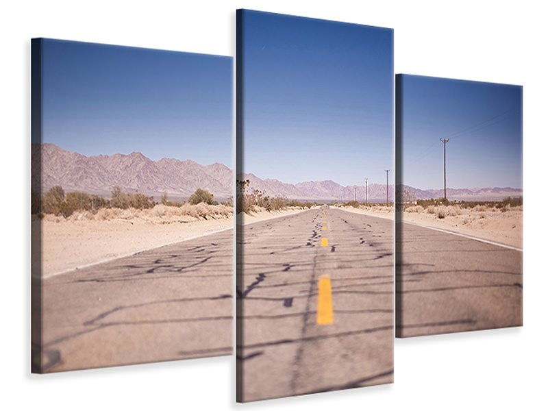 Modern 3 Piece Canvas Print In the USA