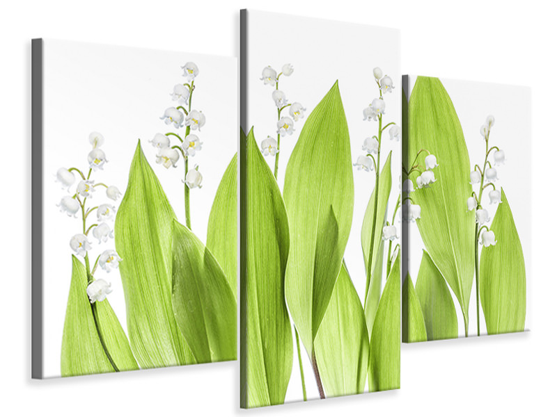 Modern 3 Piece Canvas Print Lily Of The Valley
