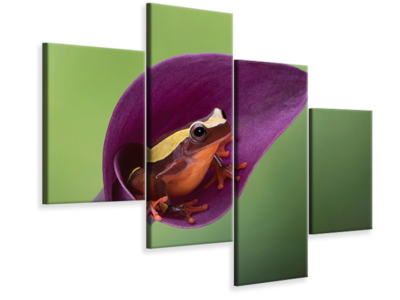 Modern 4 Piece Canvas Print Frog Cubby House