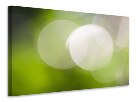 Canvas print Reflections balls