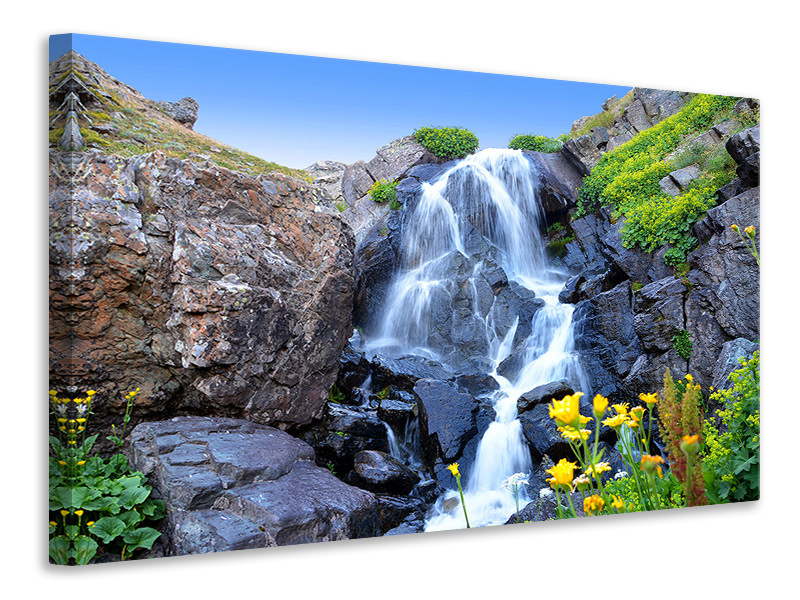 Canvas print Moving waterfall