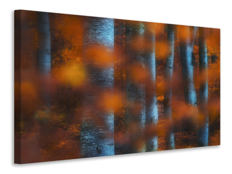 Canvas print Hidden Forest