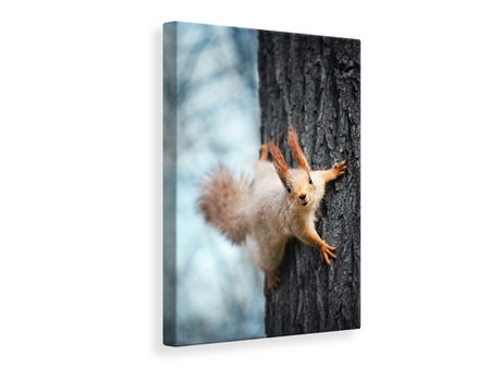 Canvas print The Squirrel