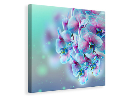 Canvas print Colored Orchids