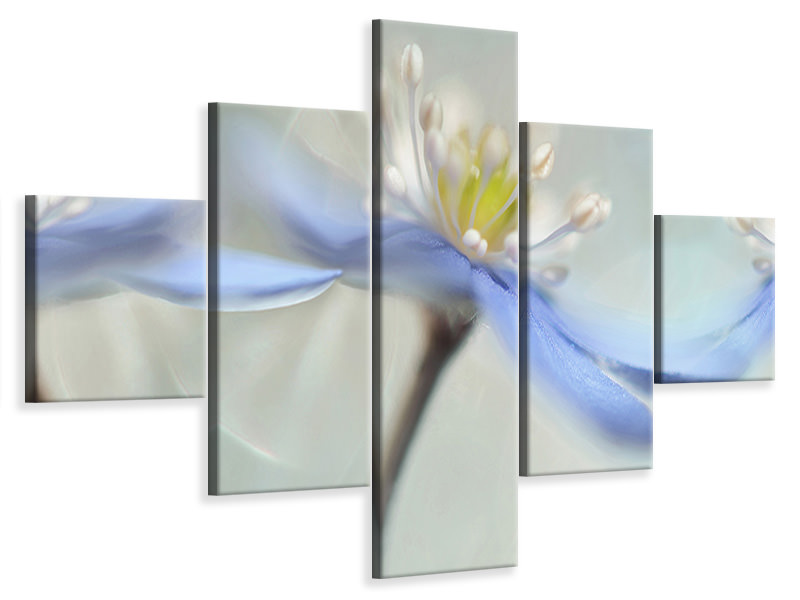 5 Piece Canvas Print Dancing Anemones